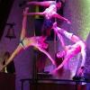 Poledancetokyo_Diana&Chiharu&Chikage02