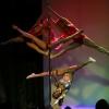 Poledancetokyo_studentsshowcase009